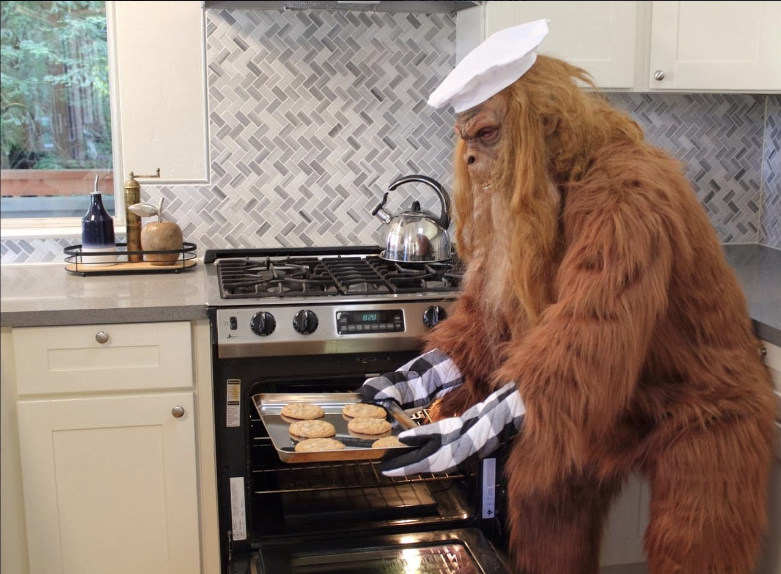 Real Estate Agent Goes Viral For Dressing Like Big Foot In Zillow Listing